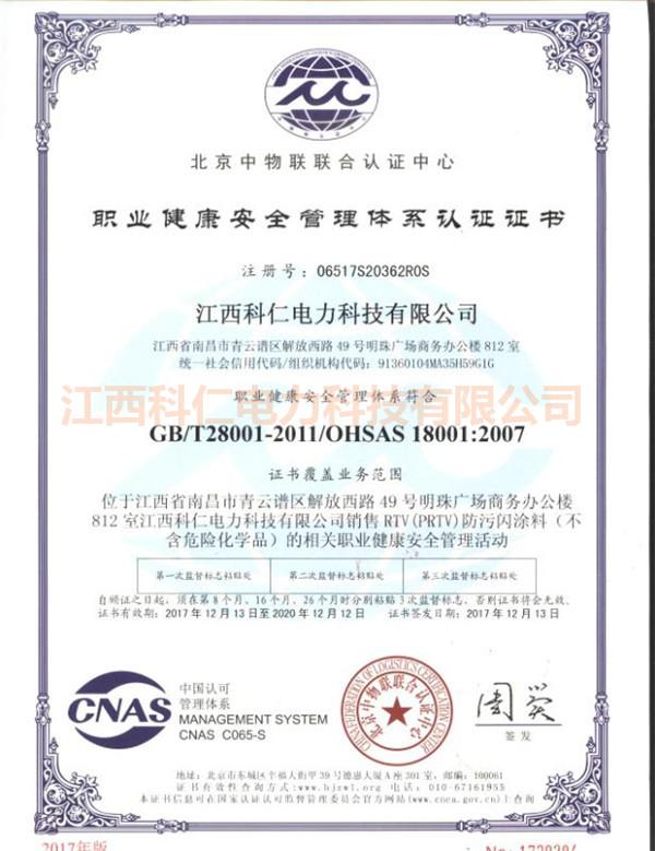 中文-职业健康体系
